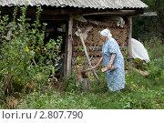 Купить «Пожилая женщина около сарая», фото № 2807790, снято 13 августа 2011 г. (c) Михаил Иванов / Фотобанк Лори