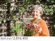 Купить «Женщина с букетом хризантем», эксклюзивное фото № 2816450, снято 22 сентября 2011 г. (c) Майя Крученкова / Фотобанк Лори