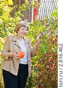 Купить «Женщина собирает шиповник», эксклюзивное фото № 2816462, снято 22 сентября 2011 г. (c) Майя Крученкова / Фотобанк Лори