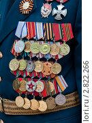 Ордена и медали на груди ветерана. Стоковое фото, фотограф Артем Мишуков / Фотобанк Лори