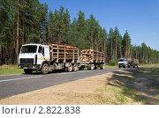 Лесовозы. Стоковое фото, фотограф Икан Леонид / Фотобанк Лори