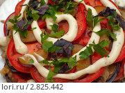 Купить «Салат с майонезом», фото № 2825442, снято 18 сентября 2011 г. (c) Михаил Никитин / Фотобанк Лори