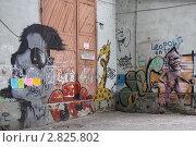 Купить «Граффити в Ужгороде. Украина», фото № 2825802, снято 5 мая 2011 г. (c) Елена Гаврилова / Фотобанк Лори