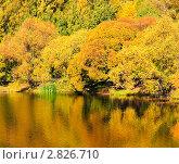 Купить «Золотая осень», фото № 2826710, снято 10 октября 2010 г. (c) Екатерина Овсянникова / Фотобанк Лори