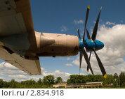 Купить «Крыло Ан-22», фото № 2834918, снято 4 июня 2011 г. (c) Алексей Трофимов / Фотобанк Лори