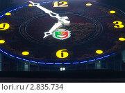 Купить «Цветочные часы, Кривой Рог», фото № 2835734, снято 6 сентября 2011 г. (c) Сергей Шульгин / Фотобанк Лори