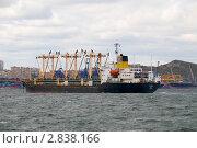 Купить «Теплоход TUMANGANG на внутреннем рейде в порту Владивостока», фото № 2838166, снято 30 сентября 2011 г. (c) Сергеев Игорь / Фотобанк Лори