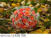 Купить «Свадебный букет на осенней листве», эксклюзивное фото № 2838706, снято 1 октября 2011 г. (c) Куликова Вероника / Фотобанк Лори