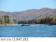 Река Катунь. Стоковое фото, фотограф Юлия Яковлева / Фотобанк Лори