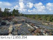 Камни, покрытые мхами и лишайниками, осенний лес и небо с облаками на Аландских островах, Финляндия. Стоковое фото, фотограф Михаил Марковский / Фотобанк Лори