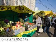 Купить «Ярмарка выходного дня в Москве», эксклюзивное фото № 2852142, снято 7 октября 2011 г. (c) Бондаренко Олеся / Фотобанк Лори
