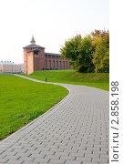 Купить «Коломенский Кремль», эксклюзивное фото № 2858198, снято 18 марта 2009 г. (c) Елена Блохина / Фотобанк Лори
