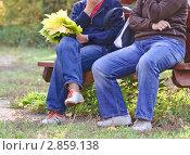 Купить «Люди в парке осенью», эксклюзивное фото № 2859138, снято 8 октября 2011 г. (c) Алёшина Оксана / Фотобанк Лори