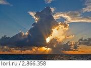 Утреннее настроение. Стоковое фото, фотограф Дмитрий Перельман / Фотобанк Лори