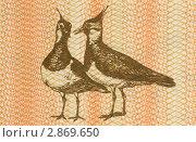 Две птицы на банкноте Литвы 1 талон. Стоковое фото, фотограф Georgios Kollidas / Фотобанк Лори