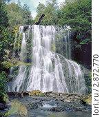 Водопад Фата невесты на острове Тасмания Австралия. Стоковое фото, фотограф Leksele / Фотобанк Лори