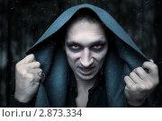 Купить «Портрет молодого мужчины в образе ночного вампира, зомби или колдуна. Образ и стиль для хэллоуин», фото № 2873334, снято 24 августа 2011 г. (c) katalinks / Фотобанк Лори