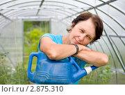 Купить «Женщина с лейкой в теплице», фото № 2875310, снято 17 июля 2011 г. (c) Papoyan Irina / Фотобанк Лори