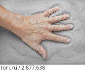 Купить «Рука пожилого мужчины на песке», фото № 2877638, снято 21 февраля 2019 г. (c) Александр Романов / Фотобанк Лори