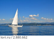 Купить «Белая парусная яхта в море», фото № 2880662, снято 7 сентября 2011 г. (c) Анна Мартынова / Фотобанк Лори