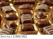 Много шоколадных конфет в ячеистой форме. Стоковое фото, фотограф Losevsky Pavel / Фотобанк Лори