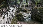 Купить «Долина бабочек. Родос, Греция», видеоролик № 2881902, снято 7 октября 2011 г. (c) Павел Коновалов / Фотобанк Лори