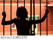 Купить «Силуэт кричащей девушки у решетки», фото № 2883070, снято 4 июня 2010 г. (c) Losevsky Pavel / Фотобанк Лори