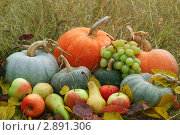 Урожай овощей и фруктов на траве. Стоковое фото, фотограф Иван Коваленко / Фотобанк Лори