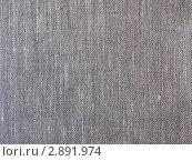 Купить «Холст», эксклюзивное фото № 2891974, снято 16 октября 2011 г. (c) Михаил Карташов / Фотобанк Лори