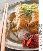 Купить «Тонкатсу с рисом, Карри соусом и маринованной свеклой», фото № 2899002, снято 5 апреля 2007 г. (c) Monkey Business Images / Фотобанк Лори