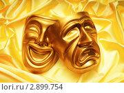 Купить «Две театральные маски», фото № 2899754, снято 7 мая 2011 г. (c) Elnur / Фотобанк Лори