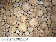 Купить «Стена из древесных спилов», фото № 2902254, снято 5 августа 2011 г. (c) Вячеслав Палес / Фотобанк Лори