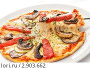 Купить «Пицца с грибами», фото № 2903662, снято 8 июля 2011 г. (c) Лямзин Дмитрий / Фотобанк Лори