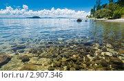 Купить «Озеро Таупо, Новая Зеландия», фото № 2907346, снято 27 января 2010 г. (c) Дмитрий Наумов / Фотобанк Лори