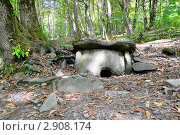 Купить «Плиточный дольмен в лесу», фото № 2908174, снято 9 октября 2011 г. (c) Анна Мартынова / Фотобанк Лори