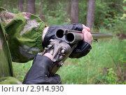 Купить «Старое ружье», фото № 2914930, снято 24 июня 2011 г. (c) Александр Романов / Фотобанк Лори