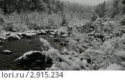 Купить «Восточные Саяны. Снегопад на горной реке Кынгарге», видеоролик № 2915234, снято 31 октября 2011 г. (c) Виктория Катьянова / Фотобанк Лори