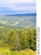 Купить «Горный пейзаж, Алтай», фото № 2915522, снято 18 июля 2011 г. (c) Яков Филимонов / Фотобанк Лори