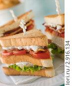 Купить «Тройной сандвич с мясом и овощами», фото № 2916134, снято 22 мая 2007 г. (c) Monkey Business Images / Фотобанк Лори