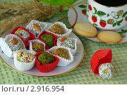 Купить «Восточные сладости - конфеты из сухофруктов», фото № 2916954, снято 31 октября 2011 г. (c) Natalya Sidorova / Фотобанк Лори