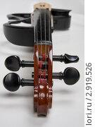 Купить «Электронная скрипка», фото № 2919526, снято 7 февраля 2011 г. (c) Александр Кадацкий / Фотобанк Лори