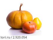 Купить «Три тыквы», фото № 2920054, снято 27 октября 2011 г. (c) Сергей Прищепа / Фотобанк Лори