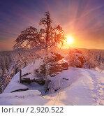 Купить «Зимний рассвет в горах», фото № 2920522, снято 13 февраля 2011 г. (c) Миронов Константин / Фотобанк Лори
