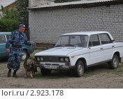 Купить «Кинолог со служебной собакой обследуют автомобиль на взрывчатые вещества», эксклюзивное фото № 2923178, снято 27 мая 2011 г. (c) Free Wind / Фотобанк Лори