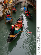 Венеция (2008 год). Стоковое фото, фотограф Александр / Фотобанк Лори