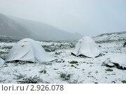 Купить «Тургундинское плато, Горный Алтай», фото № 2926078, снято 28 июля 2010 г. (c) Анна Омельченко / Фотобанк Лори