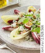 Купить «Салат из цикория, грецких орехов и яблока с сыром Рокфор», фото № 2928566, снято 9 июля 2007 г. (c) Monkey Business Images / Фотобанк Лори