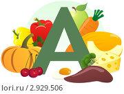 Купить «Содержание витамина А в продуктах», иллюстрация № 2929506 (c) ivolodina / Фотобанк Лори