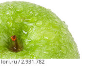 Купить «Зеленое яблоко в каплях воды», фото № 2931782, снято 5 ноября 2011 г. (c) Наталья Волкова / Фотобанк Лори