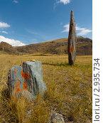 Купить «Каменный воин», фото № 2935734, снято 19 августа 2011 г. (c) Andrey M / Фотобанк Лори